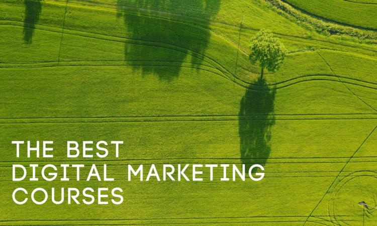 Best Digital Marketing Courses Online