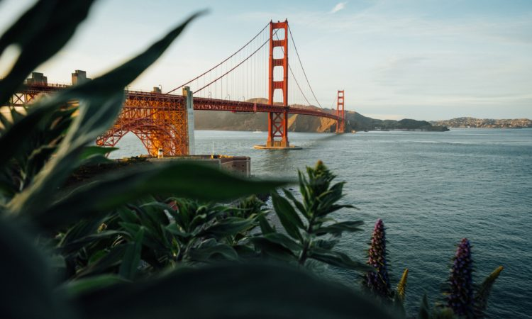 top-digital-marketing-agencies-in-san-francisco